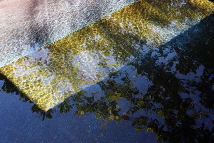 Artful reflections in the lap pool.
