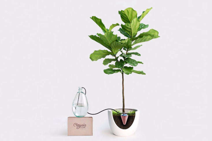 From Clayola, a company based in Egypt, aClayola cone-shaped vessel attaches to a tube and siphon to irrigate plants for up to one month by way of gravity. Contact Clayola for ordering information.
