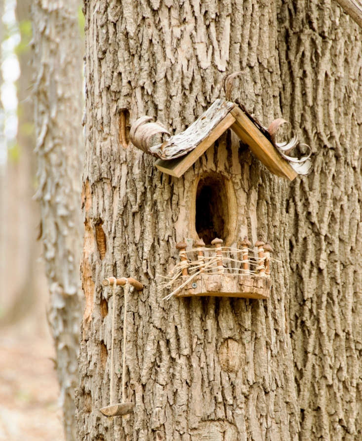 Hollow tree home, in Tinker Nature Park in Henrietta, New York. Photograph by Angie Armstrong via Flickr.