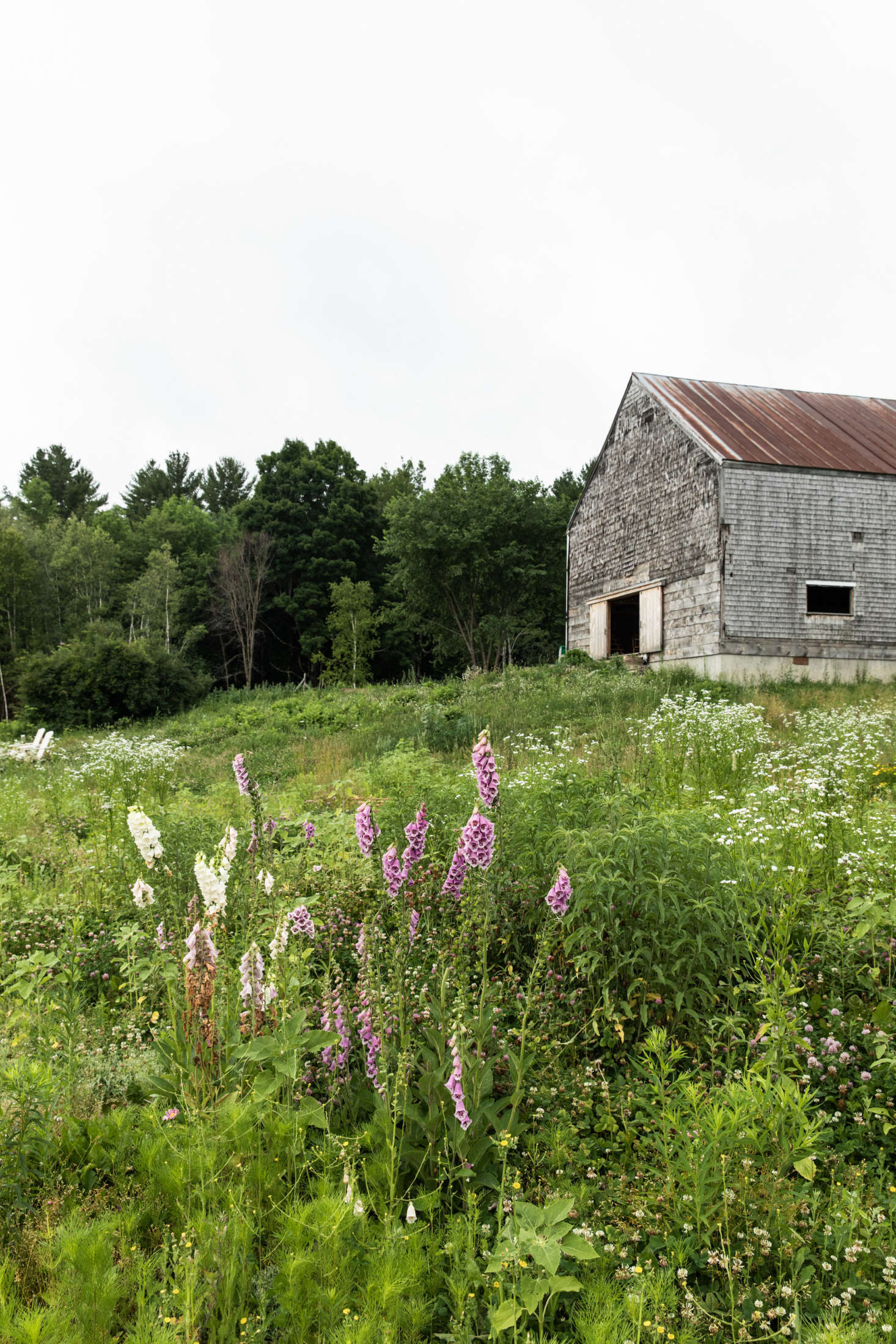 "When Lafleur and White found it, the early-th-century barn was in bad shape. ""It was teetering on a fieldstone foundation, the sills were rotted, the floor had caved in, and it had subsequently begun to lean,"" Lafleur says. But the frame and roof were in good shape. ""We decided to jack it up and pour a foundation and a concrete root cellar that now doubles as winery and walk-in cool space for vegetables and flowers,&#8"