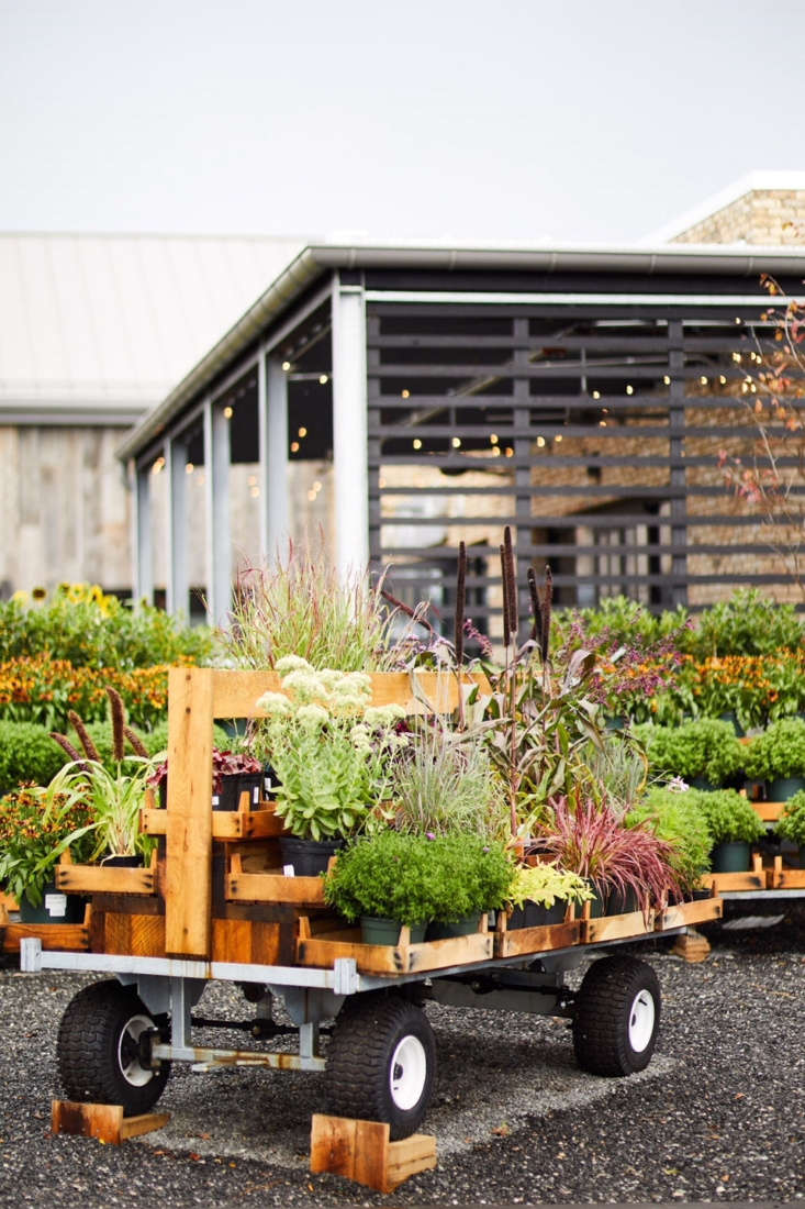 Terrain sells plants, both for indoor and outdoor gardens, but that&#8