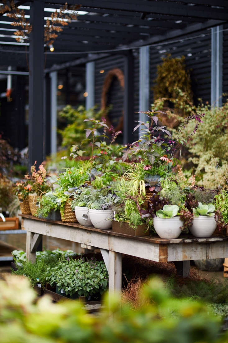 Container gardens and ceramic planters are on display with an inventive mix of edible and perennial plants.
