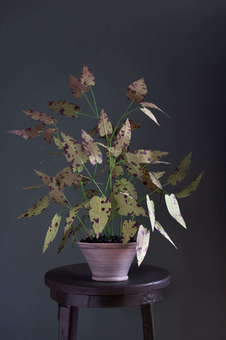 A potted paper Epimedium made exclusively for GRDN is \$\2\15. Read about the shop at Shopper&#8\2\17;s Diary: GRDN in Brooklyn.