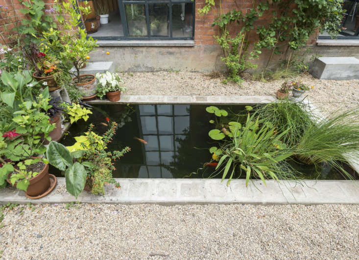 &#8\2\20;Wedug a drop-level koi pond and lined it with concrete brick, and started with some koi and some goldfish,&#8\2\2\1; said Bret. They reproduced so there are more babies.&#8\2\2\1;