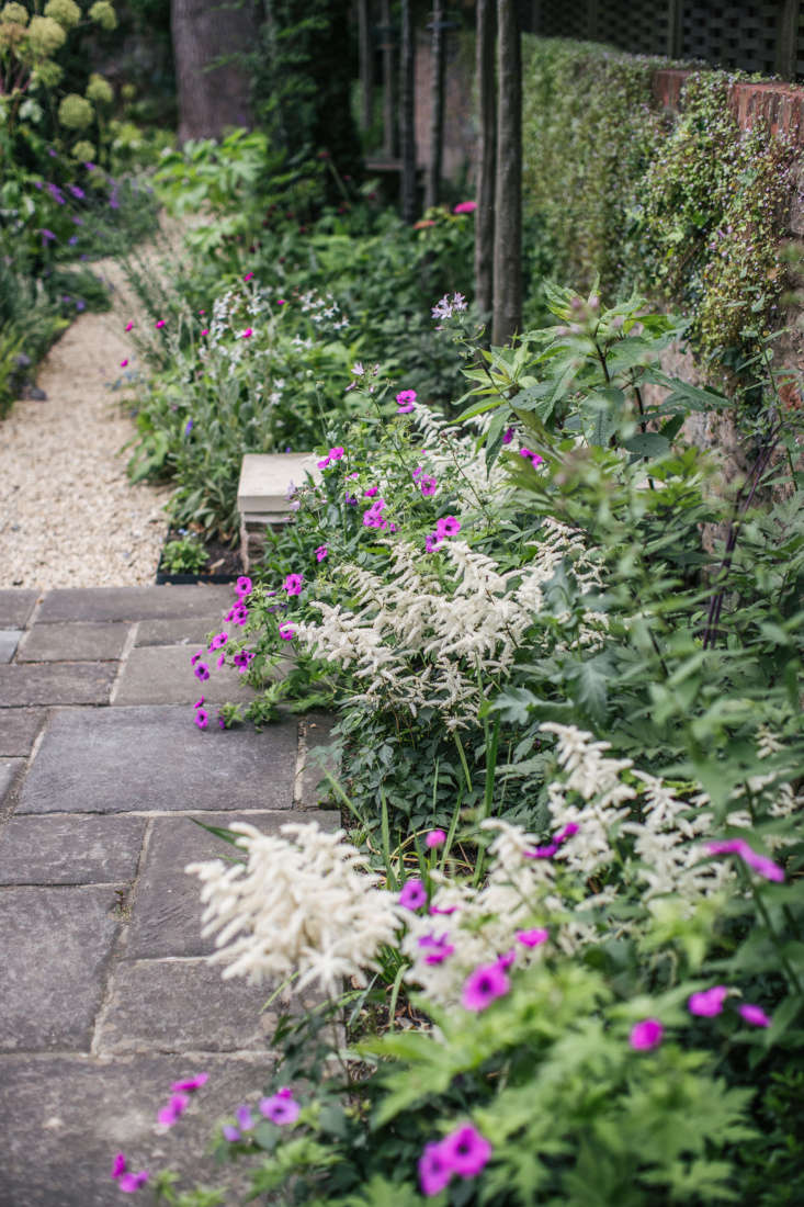 Astilbe softens the edges of the concrete pavers. The stones were existing and not the designers&#8