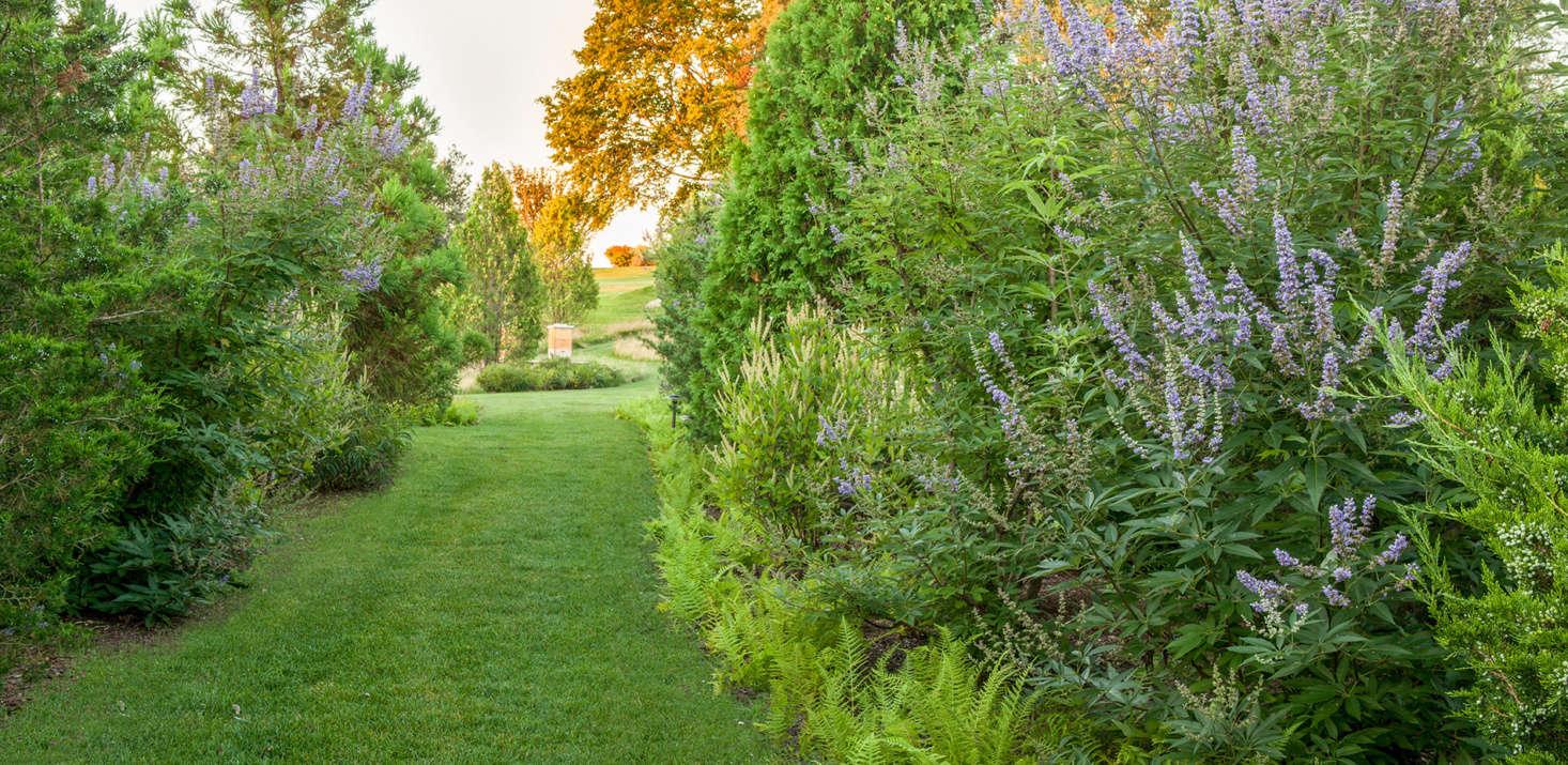 The landscape architects add &#8