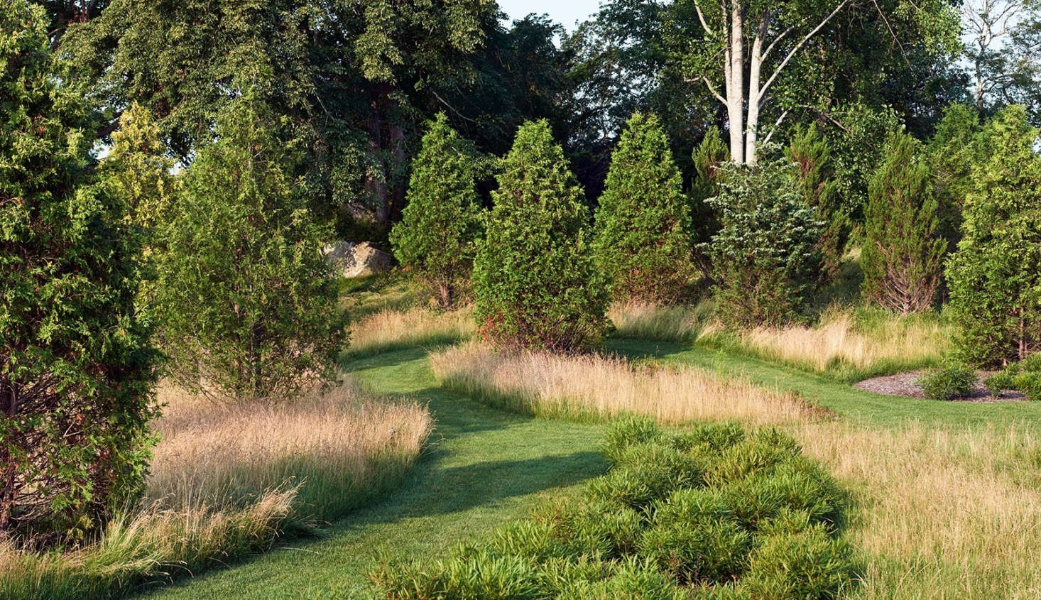 Beyond the evergreens that shelter the Blue Garden are native grasslands with mown paths. Photograph by Millicent Harvey.
