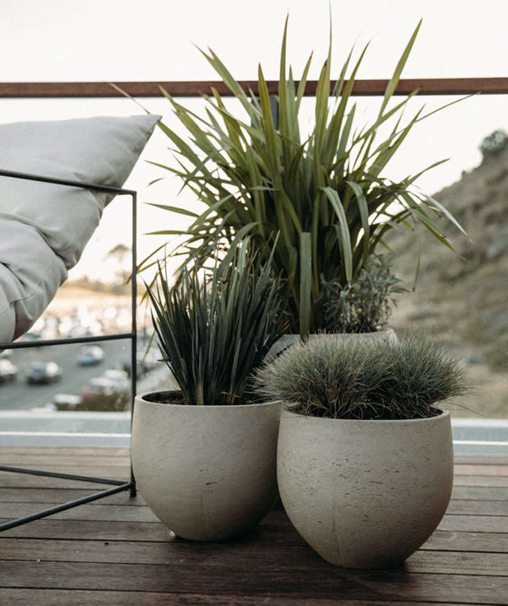 Looking for tough plants to stand up to seaside winds? The lowest-maintenance garden we&#8\2\17;ve seen, shown here and in the photo at the top, is on a deck at the Surfrider Hotel in Malibu, California, where a collection of potted perennial grasses and spiky tropicals adds just enough greenery to the view. Photography via The Surfrider.