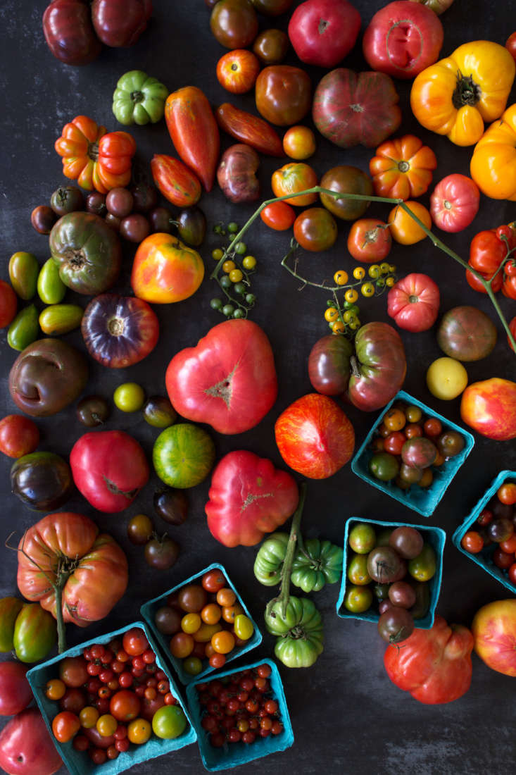 Instead of heading to a florist for a tabletop arrangement, go to your local farmers&#8\2\17; market to find colorful tomatoes of all sizes and shapes.