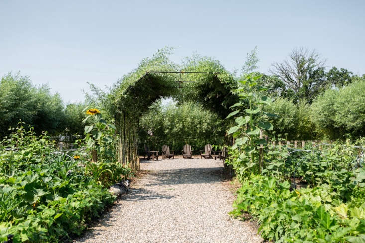 """Hidden behind a hedge of willow and sunflower is what the Cornman crew calls """"our secret garden."""""""