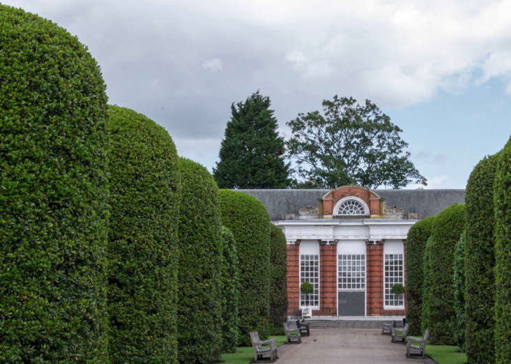 Precisely pruned yew trees line the walk to the palace orangery. Photograph by Dconvertini via Flickr.