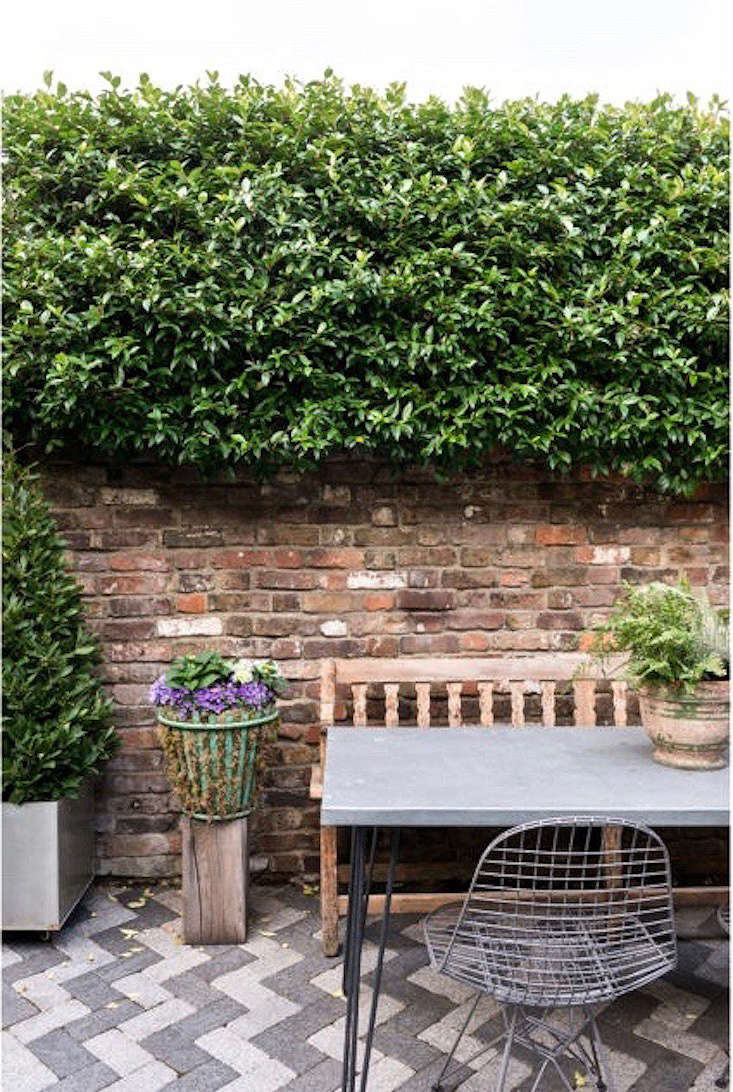 If you want to transform a wire or metal basket into a planter for a mossy arrangement, see our post\10 Easy Pieces: Wire Harvest Baskets.