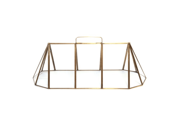 A brass and glass Seedling Cloche has an elongated frame that is &#8\2\20;ideal for placing over seedling rows to get them off to good start,&#8\2\2\1; notes retailer Crocus;£99.99.