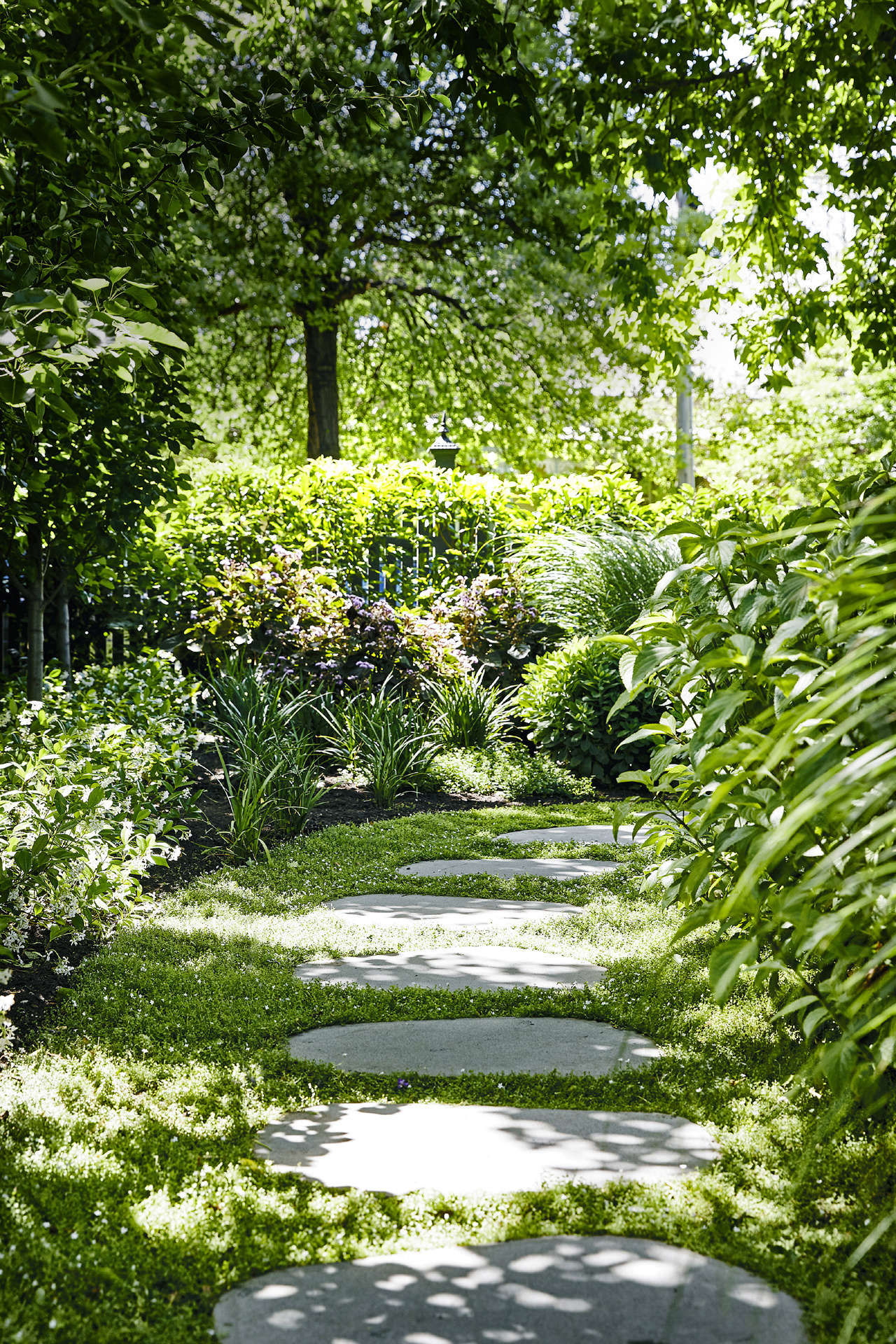 Mixed in with old-fashioned flowering plants, spiky grasses including Lomandra and Miscanthus add a modern element.