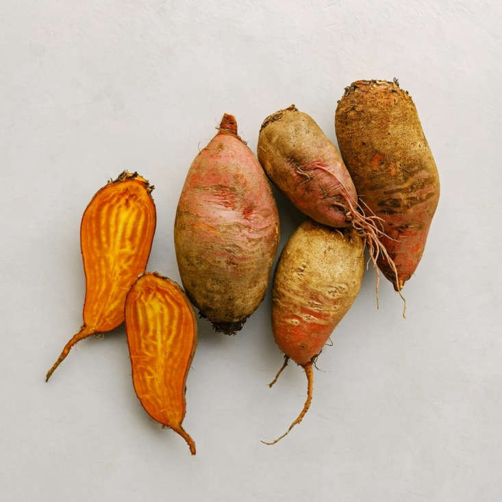 A packet of \100 seeds of Badger Flame Beets is \$3.50.