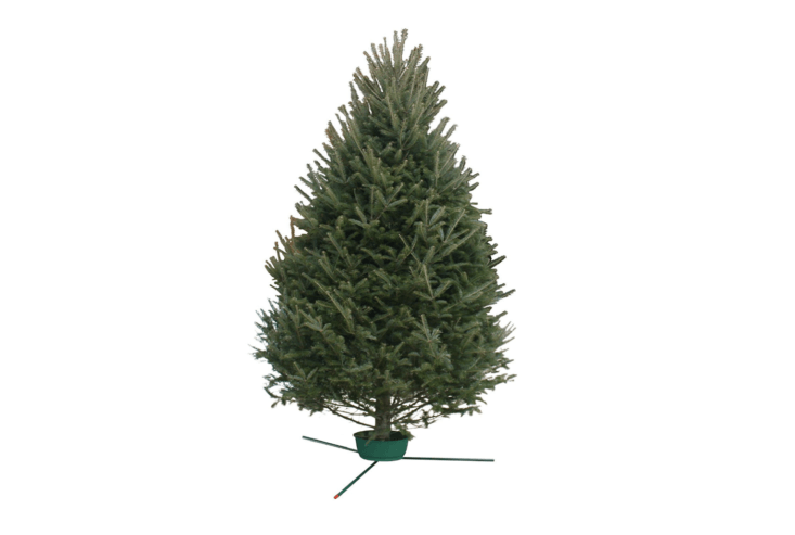 From Hallmark Flowers, a 6- to 7-foot Balsam Fir Real Christmas Tree is $9.99 (and eligible for Prime shipping). Also available for the same price on Amazon are a Fraser Fir and a Black Hills Spruce.