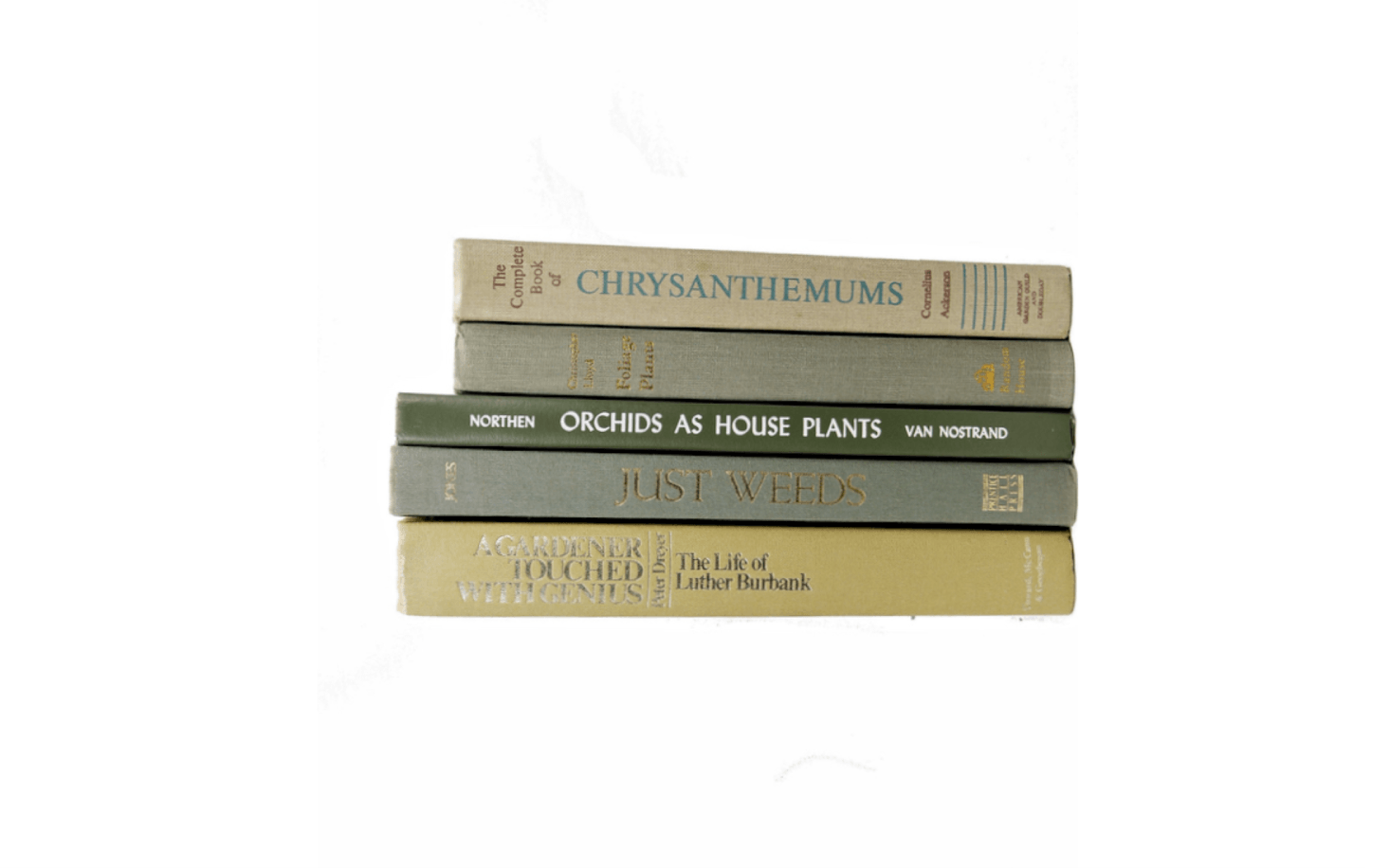 A collection of five vintage Plant & Garden Books bundled together by the seller because the colors of the covers complement each other includes volumes devoted to chrysanthemums, foliage plants, and orchids as houseplants. It is $36.34 from Book Styles via Etsy.
