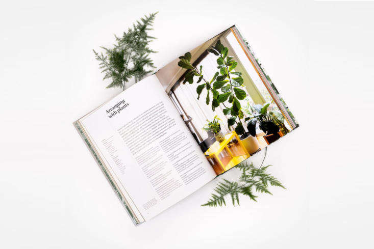&#8\2\20;Indoor Green: Living With Plants is a journey into the world of plant lovers. Mr Kitly&#8\2\17;s Bree Claffey explores plant-filled spaces around the world, documenting them in beautiful photography and in conversations with the people who inhabit them,&#8\2\2\1; notes Pistils Nursery. A hardcover copy is \$39.95.
