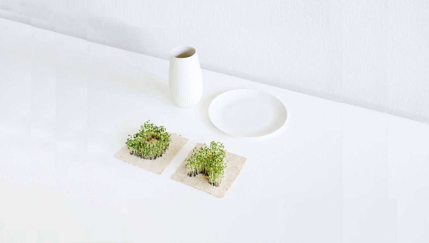 Perfect for secret messages: what looks at first like a simple piece of paper transforms into a miniature garden with the addition of water. Leafling Plant Growing Paper is imprinted with tiny seeds in the shape of letters (plus a heart); it&#8