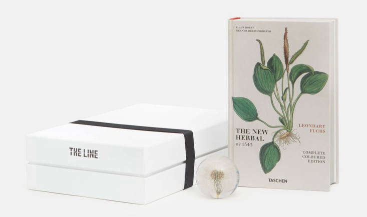 The Natural Wonders Gift Set ($90) from The Line includesThe New Herbal, an illustrated guide of more than 500 plants and their healing properties, plus a clear resin dandelion head paperweight.