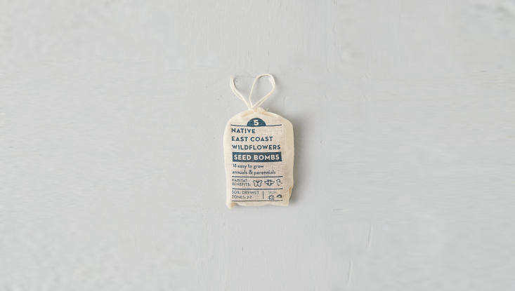 For gardening enthusiasts coast to coast:Native Regional Seed Bombsare handmade in the US and come in a muslin bag; choose from East Coast, Southeast, Midwest, Southwest, Northwest, and Rocky Mountain wildflowers. Each is \$\10 from Terrain.