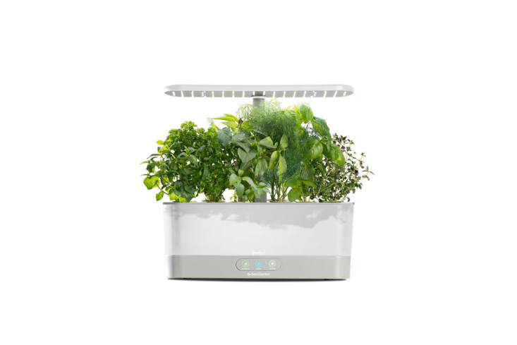 The Goodful Harvest Slim Countertop Garden & Gourmet Herbs Seed Kit is another model from AeroGarden but a little more simplified than the model featured previously. It&#8\2\17;s counter-size and comes with an energy-efficient LED grow light that automatically turns on and off; the system also reminds you when to water and add plant food. The garden kit comes in black, white, and sage for \$\189.99 each at Macy&#8\2\17;s.
