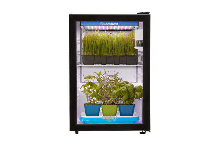 For a more robust herb growing operation, the Danby Herb Grower with \16-Watt LED BloomBoss Lighting is the size of a mini fridge that includes a grow light, fan-assisted air circulation, wire shelves, and a digital timer for light cycles; \$399 at The Home Depot.