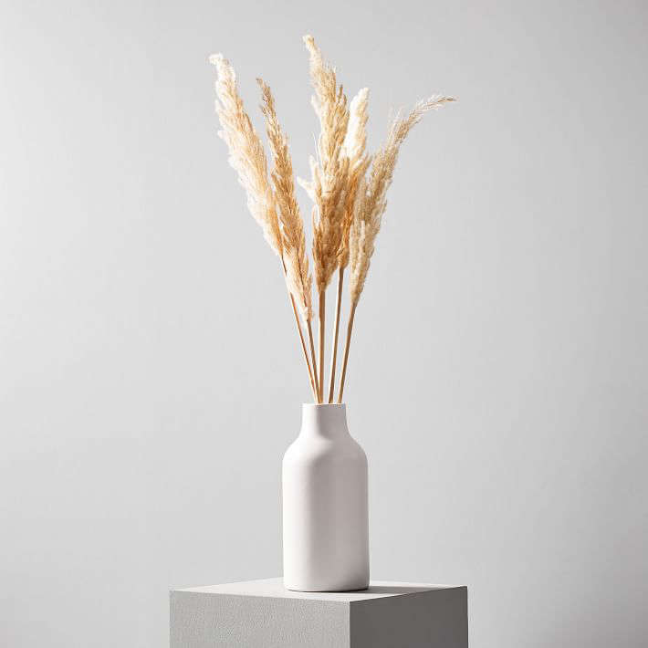 A bundle of 50-inch-long Dried Hardy Pampas Grass is $ at West Elm.