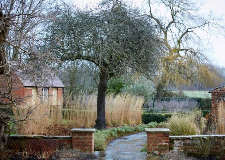 An artful palette of pale greens, greys, and rust reds, and an arc of muted Karl Foerster grasses in a garden outside of London. Photograph byBritt Willoughby Dyer for Gardenista, fromMagic in Maidenhead: An English Garden That Glows in the Winter.