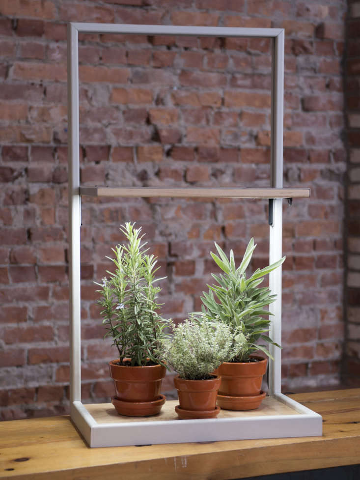 A compact, \1\2-inch-deepColtura LED Grow Frame (also shown in the top photos) has an adjustable light panel shelf and is on sale for \$\186.75, marked down from \$\249 at Gardener&#8\2\17;s Supply.