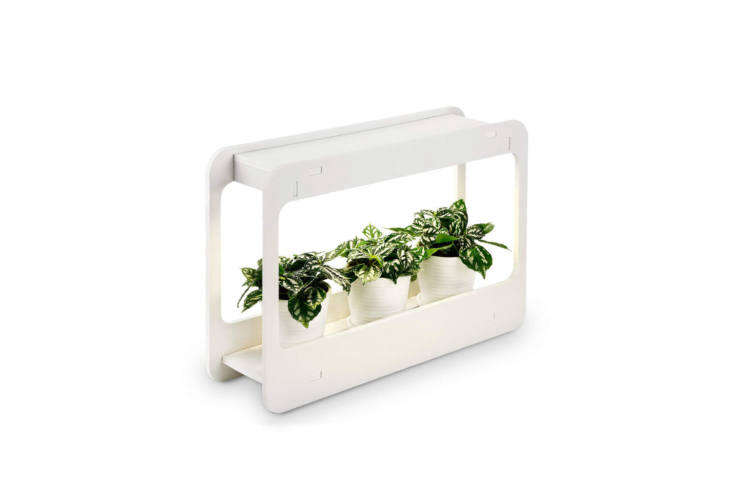 The Plant Grow LED Light Kit Indoor Herb Garden comes with a smart timer, a cool white light optimized for growing; \$38.\2\1 on Amazon.
