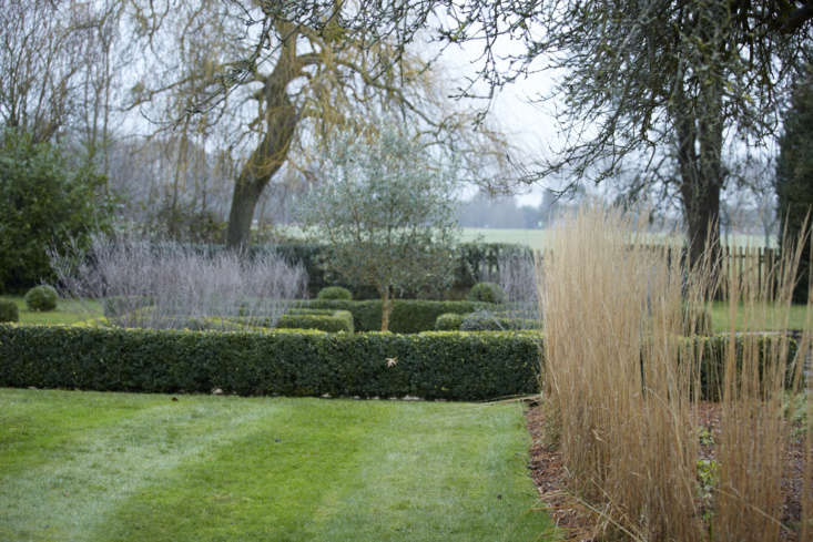 A purple haze of Russian sage (Perovskia), framed by a boxwood parterre. Read more growing tips at Russian Sage: A Field Guide to Planting, Care & Design.