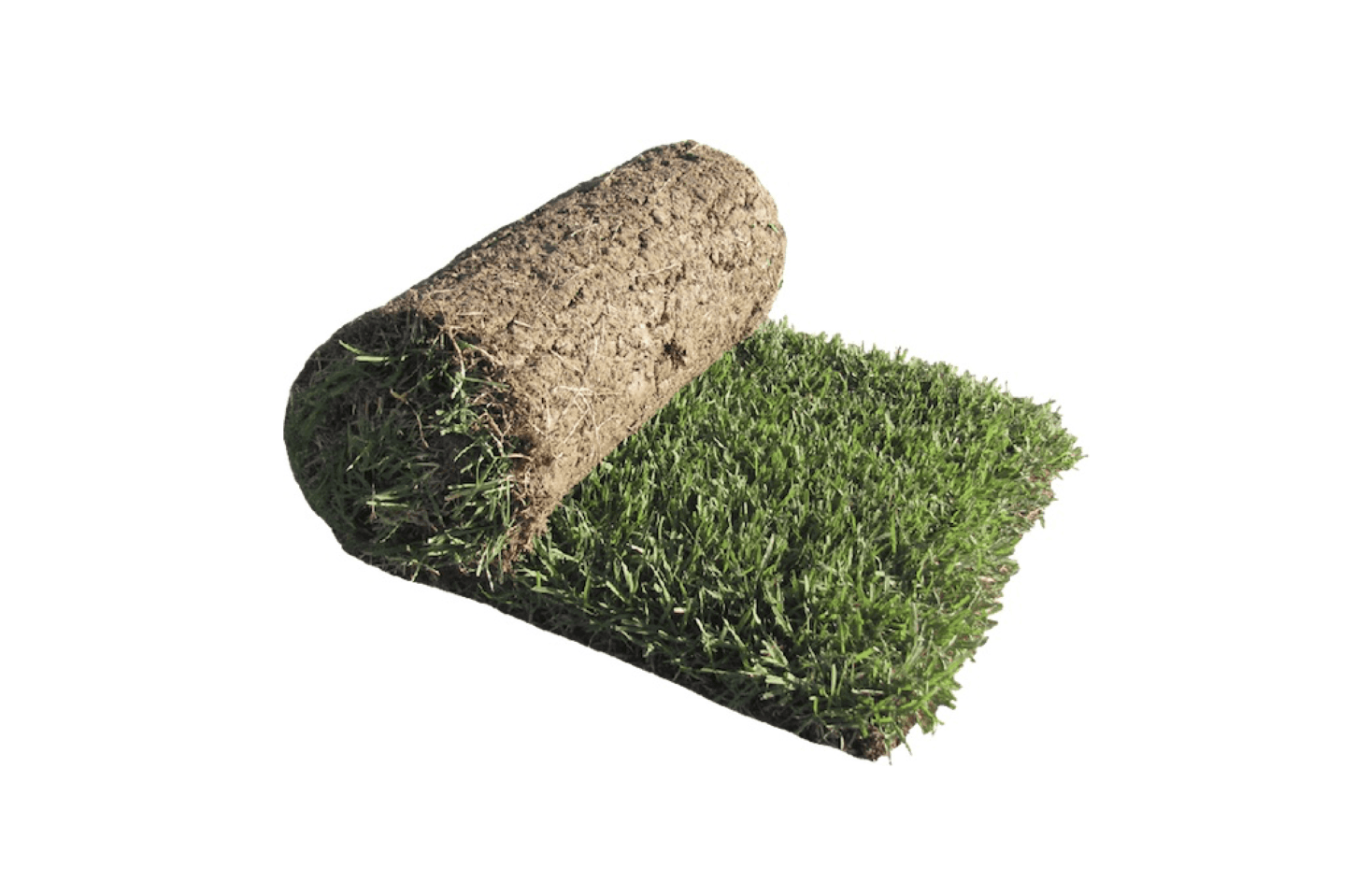 For use as lawn or turf grass, mow-ableZenith Zoysia Grass Sod are 85 cents per square foot from Central Sod Farms.