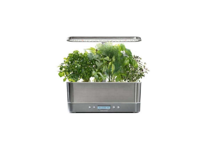 AeroGarden carries a variety of high-tech soil-less container gardens with grow lights that promise to grow plants five times faster than traditional soil-based gardens. The countertop-friendly Harvest Elite Slim (pictured) is \$\143.96; it can grow up to six plants. AeroGarden offers dozen of seed kits; I&#8\2\17;m partial to the Mixed Kale Seed Pod Kit for \$\1\2.76.