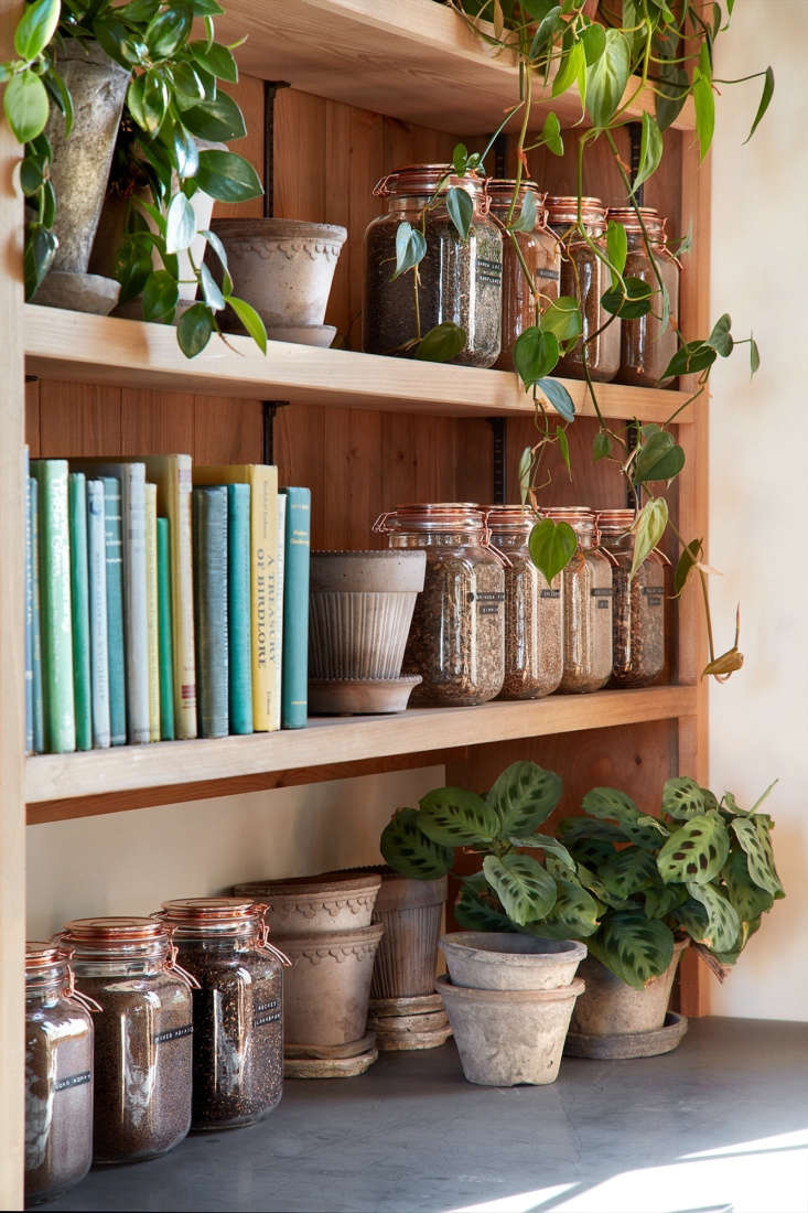 Inside the garden shed is a micro-library full of garden books.