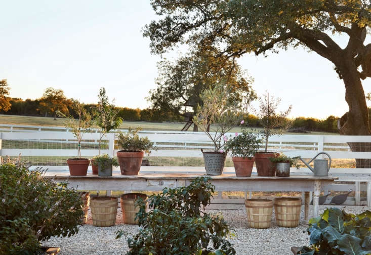 Growing plants in containers can make it easy to move them around to find the best light throughout the day.