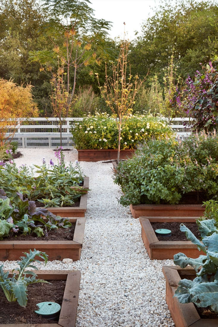 Gravel pathways provide easy access to raised beds.