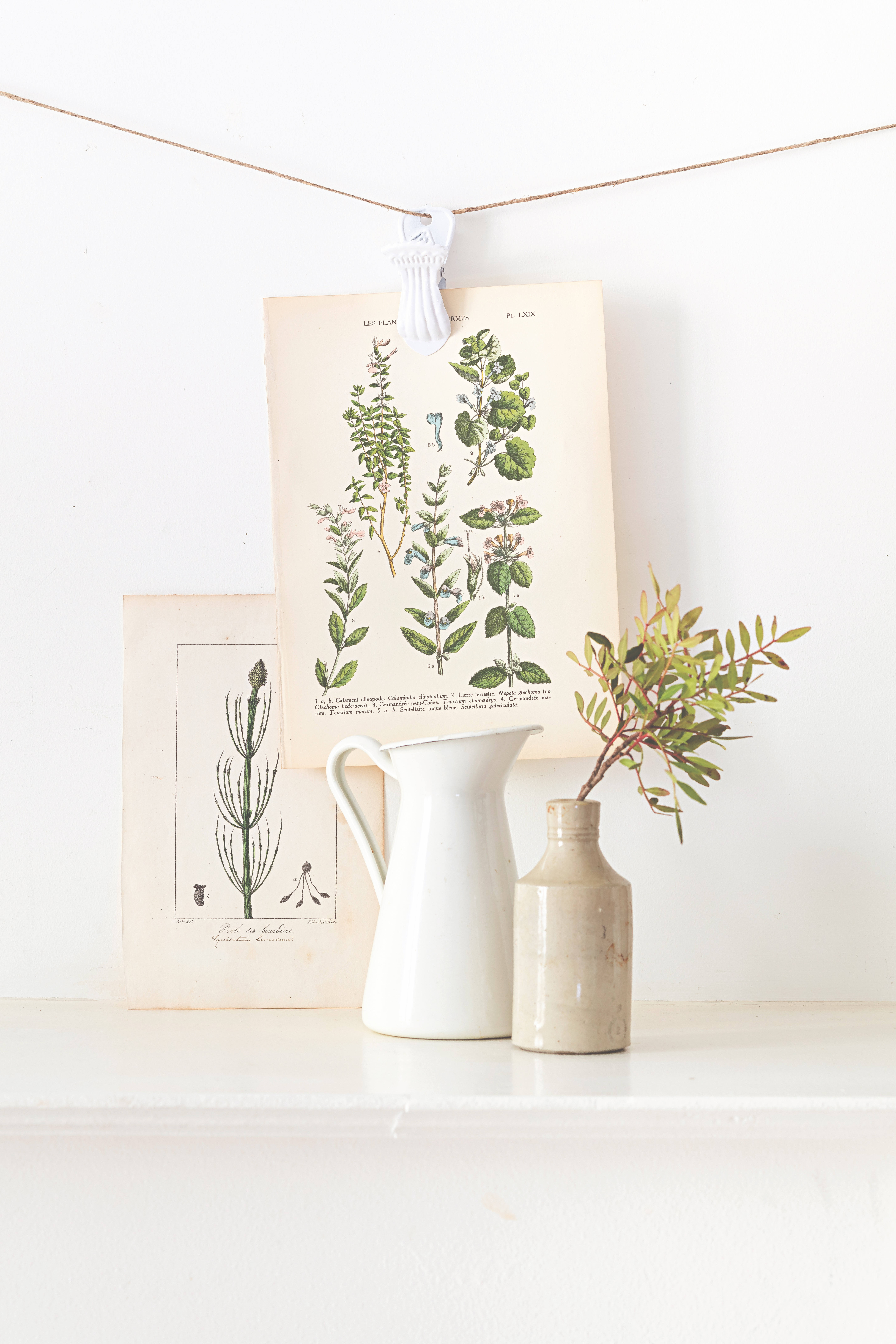 Unsurprisingly, Soulayrol has great styling tips too—such as adorning your walls with vintage botanical prints or engravings in a makeshift wall paper, or hanging them individually from twine.