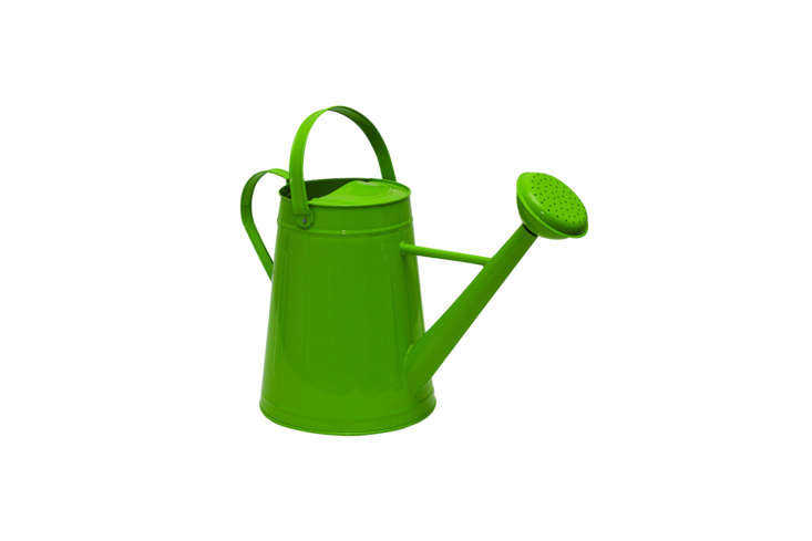 Found on Amazon, the Tierra Garden Traditional Watering Can comes in ultra-bright colors like the green shown here; $38..