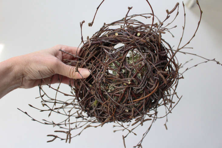 The base of the nest. Trimmed butts and woven-in twigs allow a more clear shape to emerge.