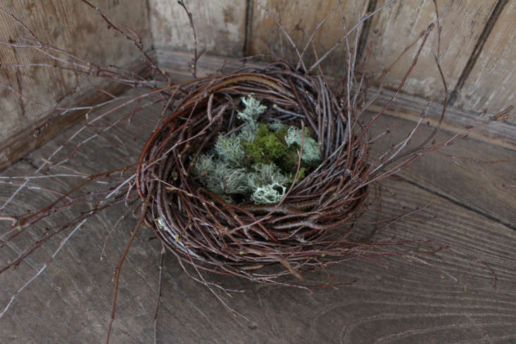 In the corner of Gina&#8\2\17;s wooden pub settle, the nest is ready for eggs.