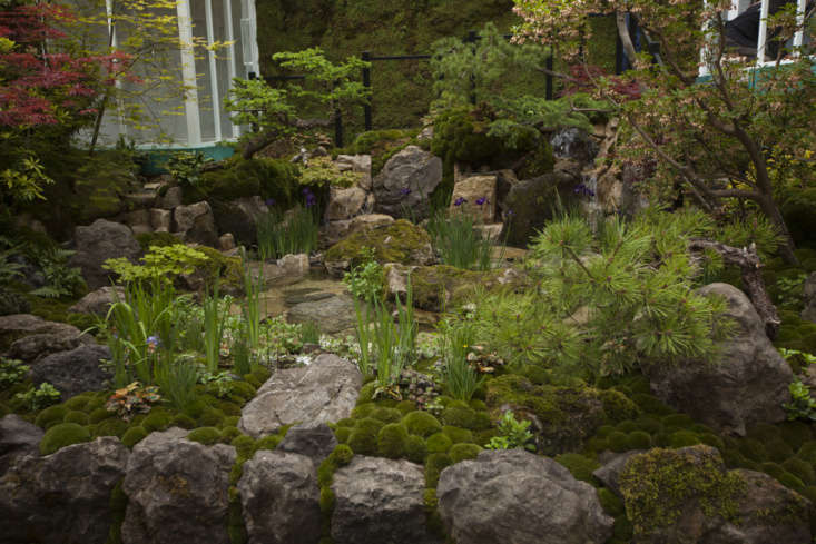 King of the small gardens, Kazuyuki Ishihara is no stranger to conifers, or rocks, or moss.