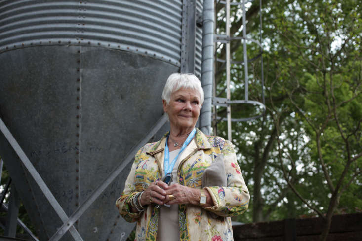 Dame Judi Dench and the silo of Chelsea.