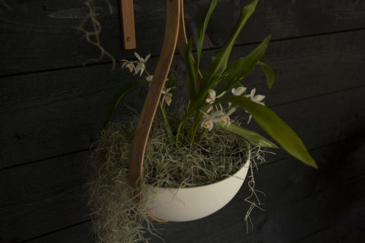 Tom Raffield&#8\2\17;s hanging planter with orchids arranged by Sheila Jack.