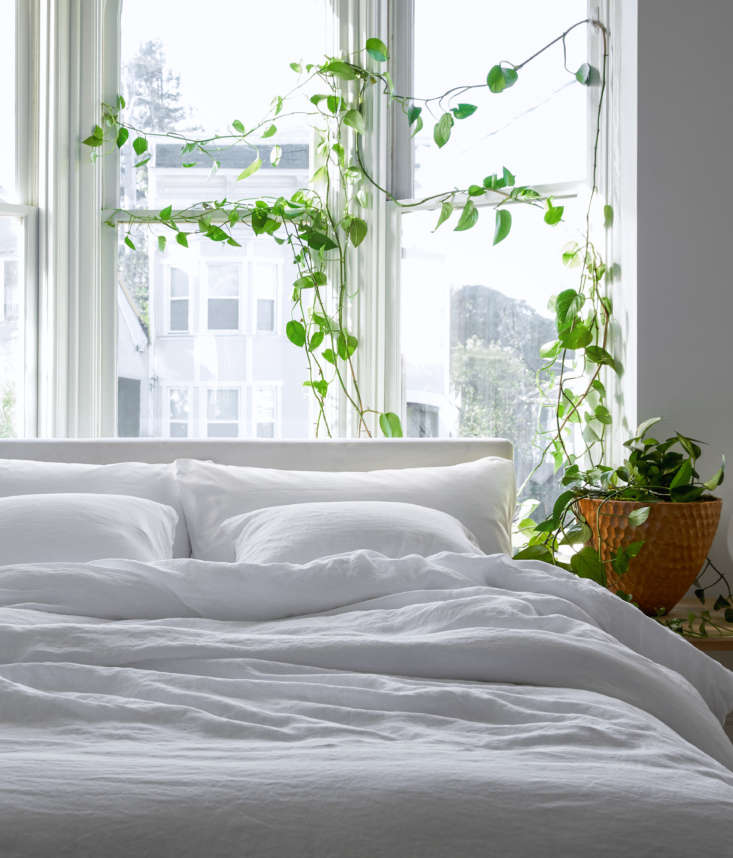 &#8\2\20;For a clean and calm look, you can&#8\2\17;t beat a simple white-and-green palette,&#8\2\2\1; she writes of this tranquil bedroom that features a meandering &#8\2\16;Jade&#8\2\17; pothos plant.