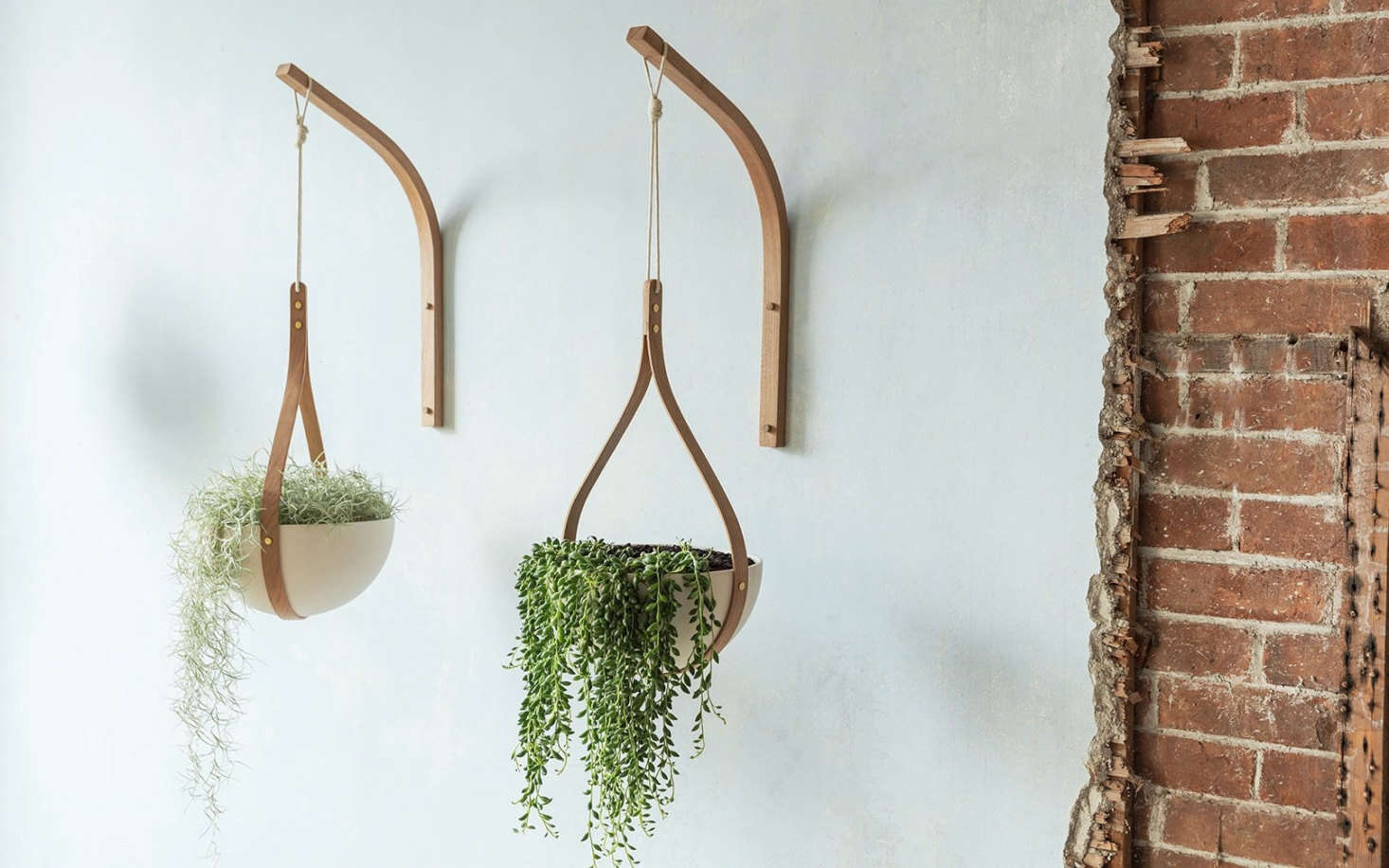 His Morvah Wall Hanging Planters are fabricated from sustainably sourced oak; £5.