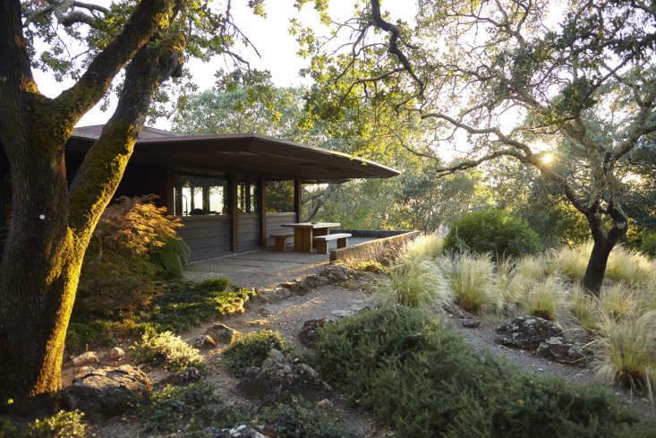 One of Remodelista&#8\2\17;s founding editors recently bought a home in Napa that feels like you&#8\2\17;re in the woods—even when indoors. Photograph by Daniel Bernauer, from The Midcentury Petal House: Remodelista Co-Founder Janet Hall at Home in Napa.