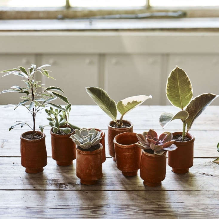 The Lali Mini Terracotta Pots are perfect for small succulents and other tiny plants; \$£7 at Rowen & Wren.