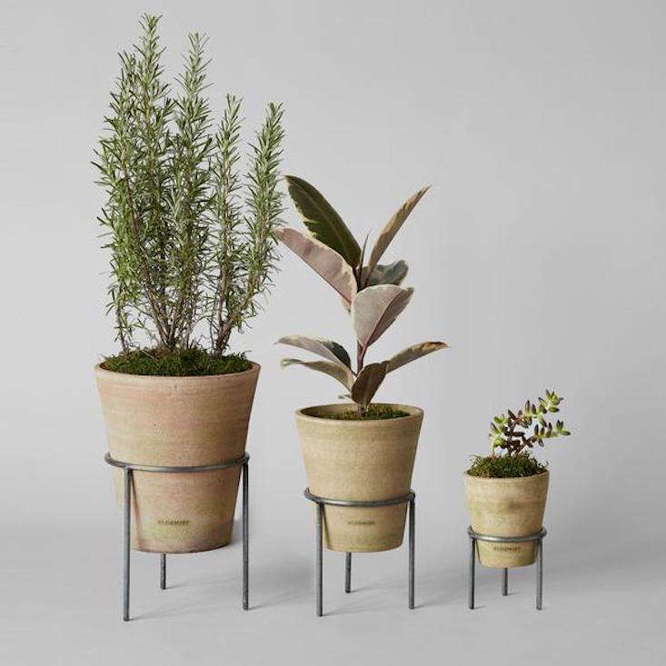 Designed by Bloomist and made from local terra-cotta clay by artisans at the Atuto Group in Honduras, the Studio Planter comes in a greenwash (pictured) and a whitewash; $ to $3