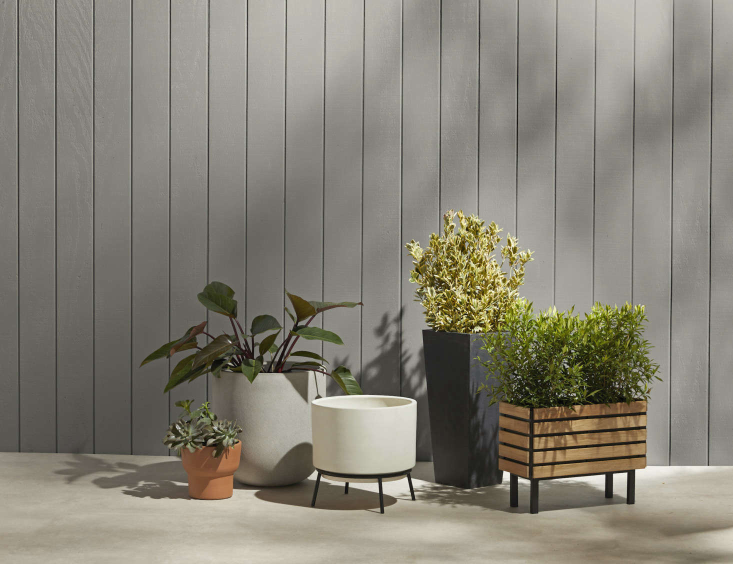 A cluster of Rejuvenation's planter offerings, from midcentury-style to clean-lined teak, terracotta to steely grey.